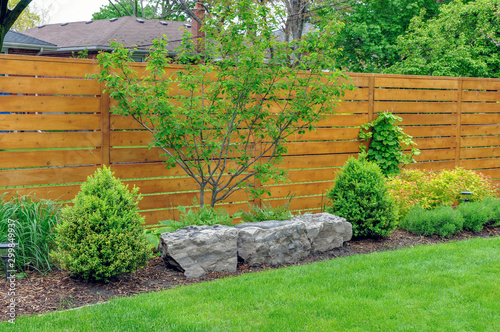 Fototapeta An Asian inspired and beautifully maintained garden features rockery and minimalist style cedar fencing. obraz