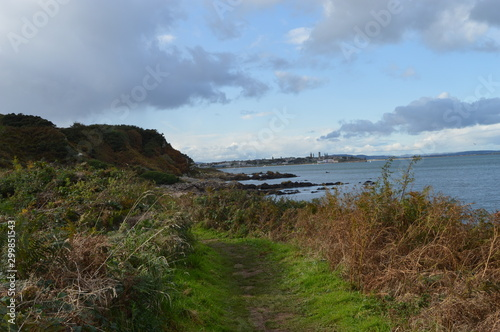 Path at Kinkell braes near Rock and Spindle,  St Andrews, Fife, Scotland Wallpaper Mural