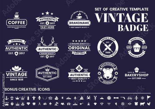 Vintage Retro Vector for banner