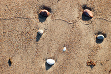 Stones On The Sandy Beach Afte...