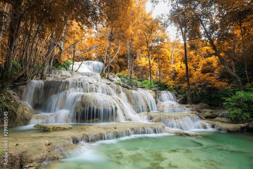 Foto auf Gartenposter Olivgrun Amazing in nature, beautiful waterfall at colorful autumn forest in fall season