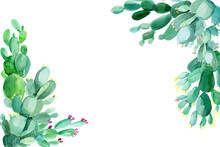 Set Of Watercolor Green Cacti, Succulents, Haworthia On A White Background, Hand-drawing, Greeting Card With Place For Text