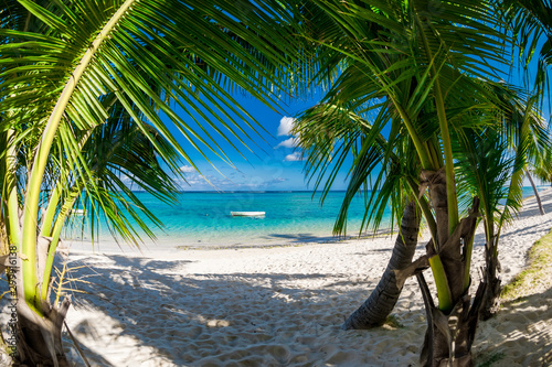 Palm luxury beach with coconut palms, sand and ocean. Tropical holiday banner