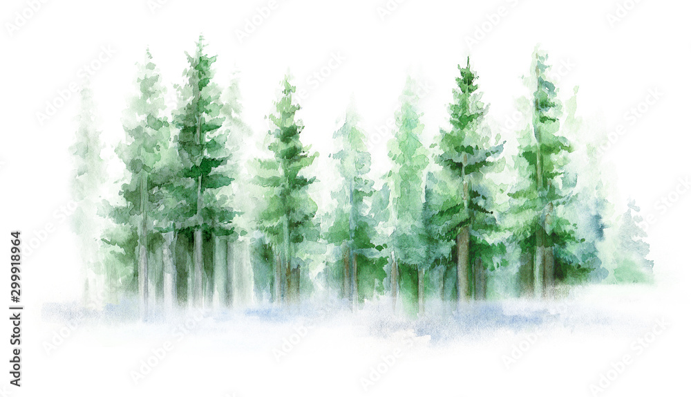 Fototapety, obrazy: Green landscape of foggy forest, winter hill. Wild nature, frozen, misty, taiga. Winter watercolor background