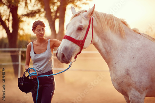 woman rider and her beautiful horse at summer day on the farm.