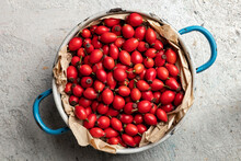Rose Hips In A Pot On A Bright Background