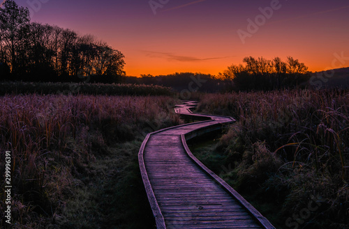 Beautiful sunrise over the boardwalk in Wawayanda state park Fototapet