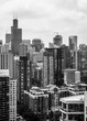 chicago skyline from the north in black and white
