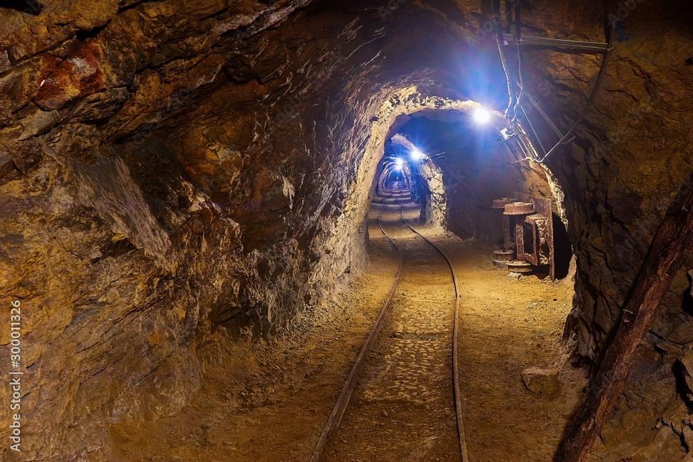 Fototapeta Mining tunnel underground with lights and rails