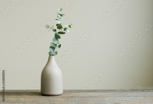 Cuadros en Lienzo Eucalyptus branch in a vase on the table with copy space