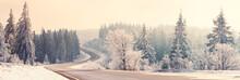Winter Landscape At Morning Light, Sunny Morning. Empty Road