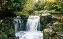 Jesmond Dene Waterfall In Autu...