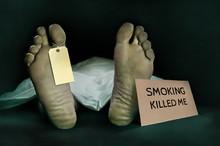 Anti Tobacco Campaign . Dead B...