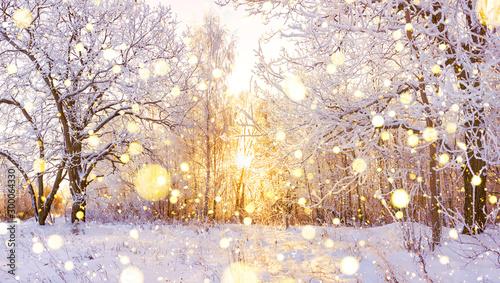 Fototapeta snowy winter landscape panorama obraz