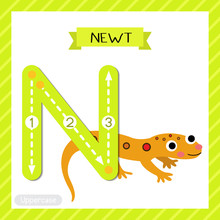 Letter N Uppercase Tracing. Ea...