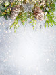 Leinwanddruck Bild - Christmas or winter background with a border of green and frosted evergreen branches and pine cones on a grey vintage board. Flat lay