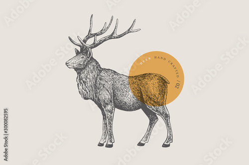 Valokuvatapetti Hand drawing of a forest deer on a light background