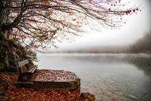 Einsame Bank Im Herbst Am See