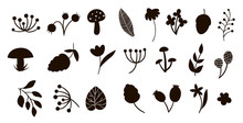 Vector Forest Elements Silhouettes Clip Art Set. Flat Trendy Illustration With Leaves, Branches, Berries, Cones, Mushrooms. Woodland Or Forest Black Elements Isolated On White Background.