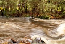 Yarra River In Warburton