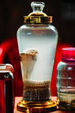 Tourists Try Snake Wine On The...