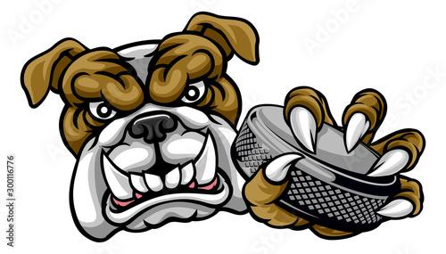 Fotografie, Obraz  A bulldog ice hockey player animal sports mascot holding a hockey puck