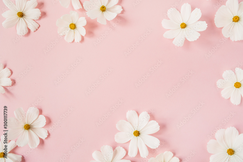 Fototapeta Minimal styled concept. White daisy chamomile flowers on pale pink background. Creative lifestyle, summer, spring concept. Copy space, flat lay, top view.