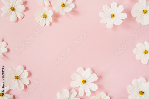 Obraz Minimal styled concept. White daisy chamomile flowers on pale pink background. Creative lifestyle, summer, spring concept. Copy space, flat lay, top view. - fototapety do salonu
