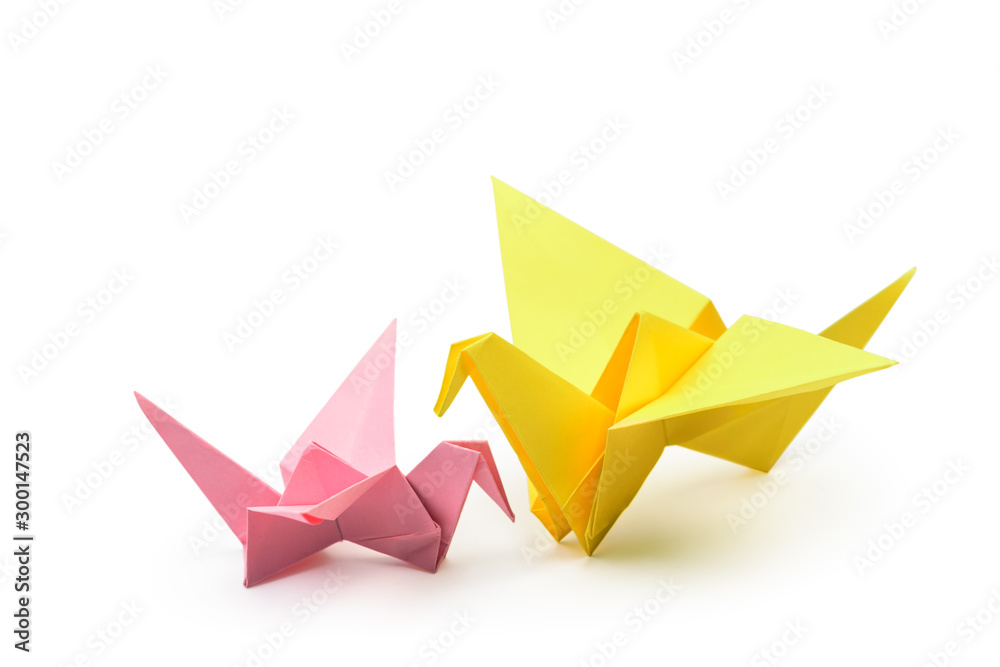 Fototapeta Pair of Origami birds, child and adult isolated with clipping path.