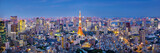 Cityscape of Tokyo skyline, panorama aerial skyscrapers view of office building and downtown in Tokyo in the evening. Japan, Asia.