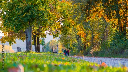 Valokuvatapetti Herbststimmung