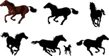 Horse Animal Silhouettes Set. Vector Graphics