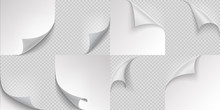Curled Page Corners. Flipped And Turning Paper Leaf Set On Transparent Background. Vector Folded Or Turn-up Book White Page Like Effect Curling Peel Or Labe