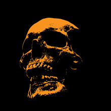 Scull Portrait Silhouette In C...