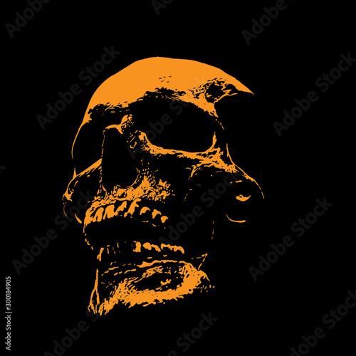 Fotografia Scull portrait silhouette in contrast backlight
