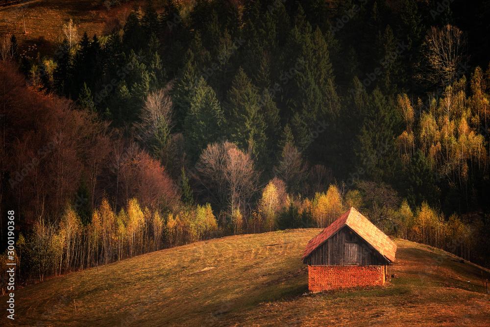 Fototapety, obrazy: Sunrise / sunset on mountain hills of a romanian village. Bran. Brasov