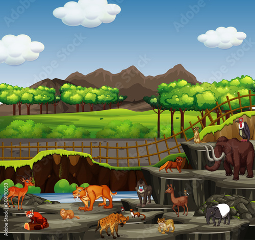 Scene with many animals in open zoo