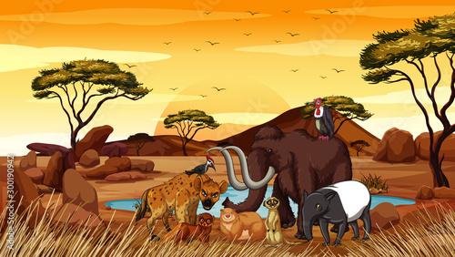 Scene with many animals in savanna Fototapet