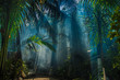 canvas print picture - Morning light in beautiful jungle garden