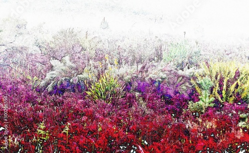 Foto op Canvas Bordeaux Landscape with a meadow and fog on a cold morning
