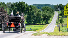 Amish Open Horse And Buggy Wit...