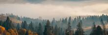 Wide Panorama Of Beautiful Aut...
