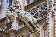 Grotesque Gargoyle Water Spout Sculpture On Facade Of Gothic Medieval St. Stephen's Cathedral Or Stephansdom In Vienna, Austria