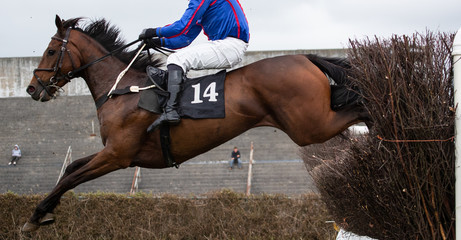 Race horse jumping a hurdle on the race track