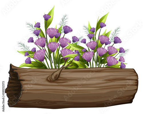 Spoed Foto op Canvas Kids Flowers and wooden log on white background