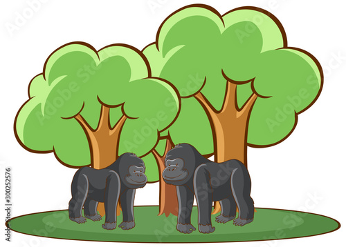 Isolated picture of two gorillas in forest