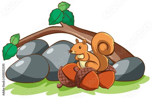 Spoed Foto op Canvas Kids Isolated picture of squirrel and nuts