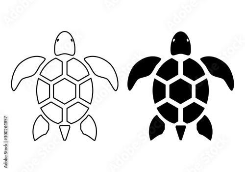 Fotografie, Obraz graphic sea turtle,vector illustration of sea turtle,vector of turtle design on
