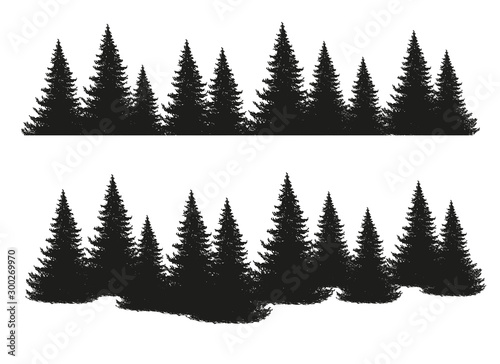 plakat Black silhouettes of conifers isolated on white background. Collection of pines, spruce, larch, cedars. Set of park, forest, landscape elements. Flat stock vector