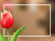 Border Template With Tulip Flo...